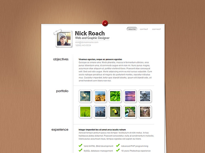 MyResume WordPress Theme