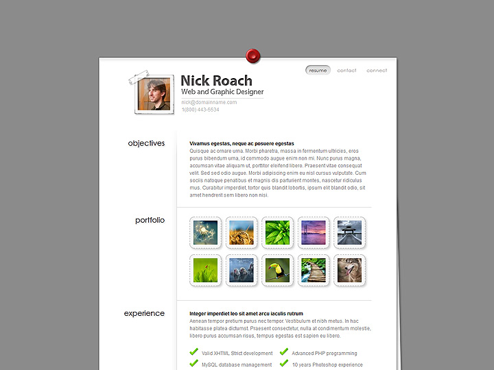 MyResume WordPress Theme - resume wordpress theme