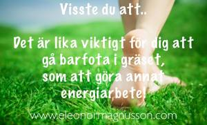 Eleonor budskap gräs