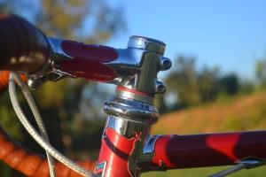 6868 Elessar bicycle 313