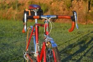 6878 Elessar bicycle 229