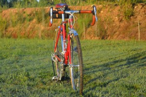 6934 Elessar bicycle 226