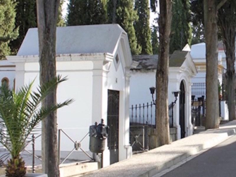cementerio-municipal