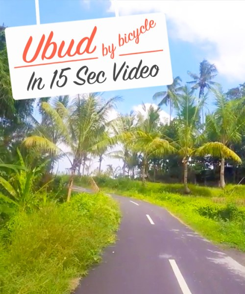 Ubud_Bicycle-Video