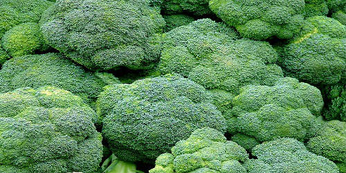 Broccoli big