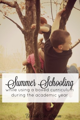 Summer Schooling using a Boxed Curriculum