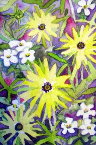 Osteopernum Bacopa flowers floral watercolor Elizabeth Kurtak Fraser, Colorado Winter Park Art
