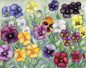 Pansy pansies watercolor painting flower art