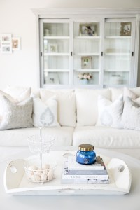 Coffee Table Decor and Tray Ideas