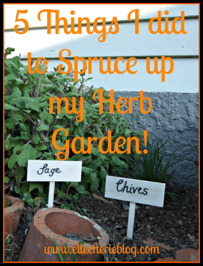 5 Things I did to Spruce up my Herb Garden!