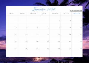 Janvier 2016 plage ER