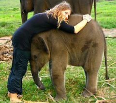 Chelsea-Anderson-baby-elephant