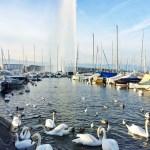 Un week end à Genève – Elodie in Paris