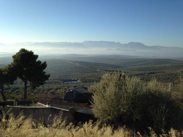 Valle de olivos, Sierra de Cazorla