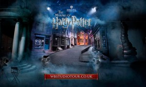 MASTER-WEB-Diagon-Alley-2013-RGB