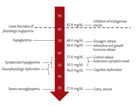 hypoglycemia-big