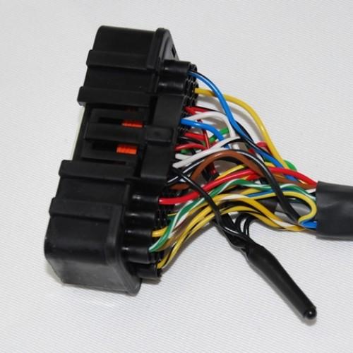 Emerald Full ECU wiring loom - Ford Duratec engine