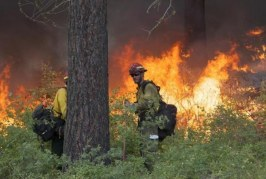 Firefighters Face Highest Heart Attack Risk Among Responders