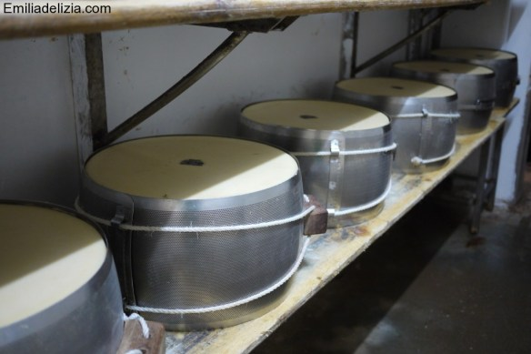 metal moulds for the cheese