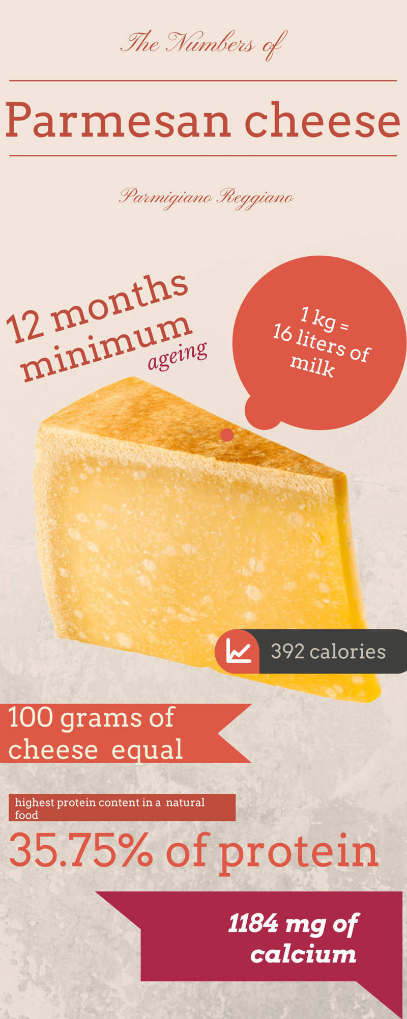 Parmesan cheese infographic