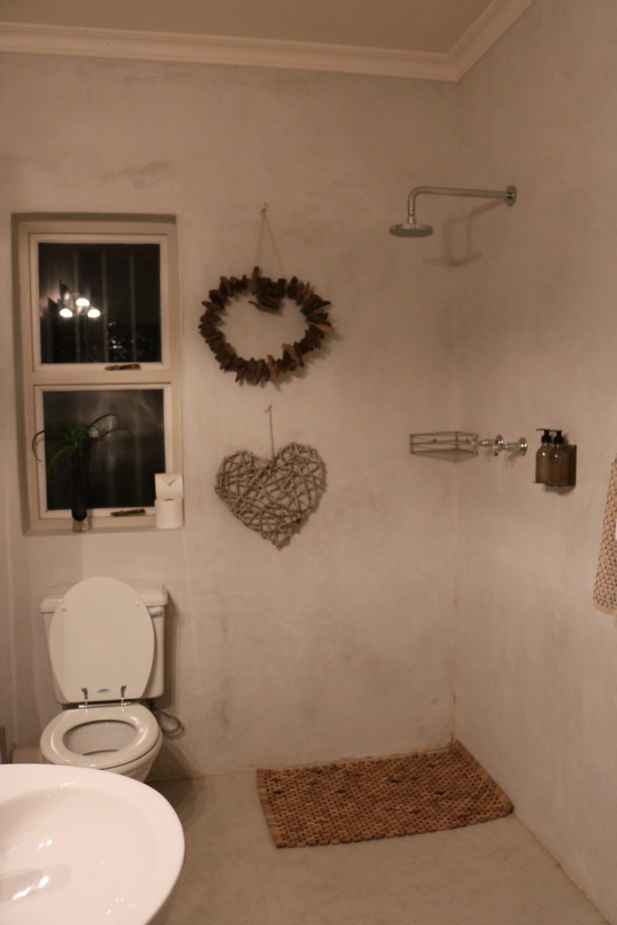 Weird Bathroom Arrangement