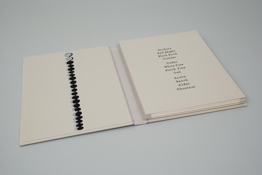 MANDY BONNELL Bethany Seeds, 2013, artist's book