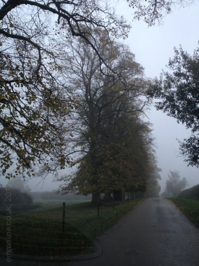 misty autumn morning in England by emmaline.co.uk craft blog