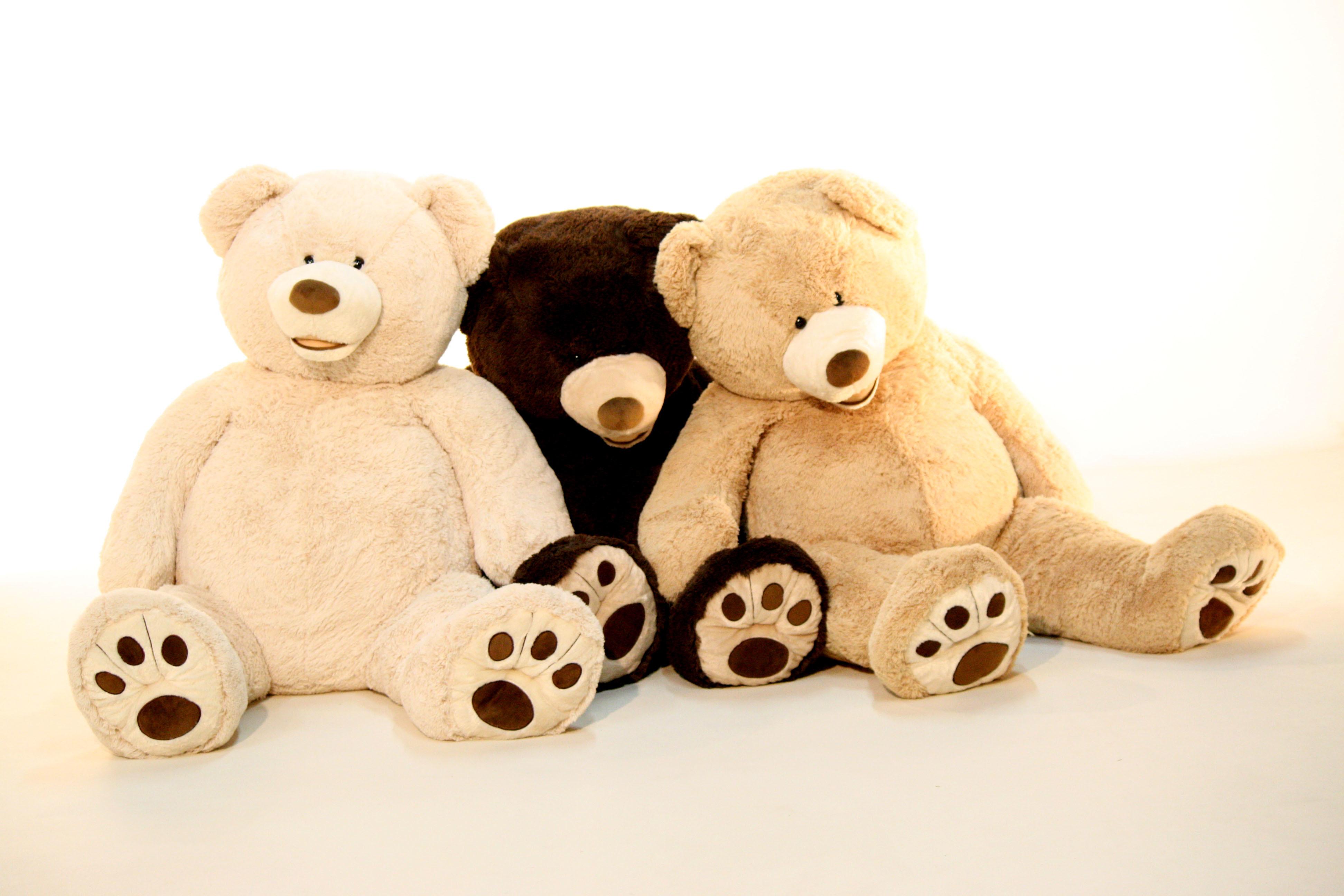 Ursos De Pelcia Gigantes