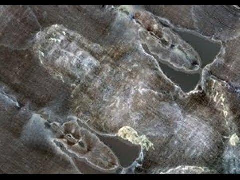 VEREDICTO-CIENTIFICO-SOBRE-LA-SABANA-SANTA