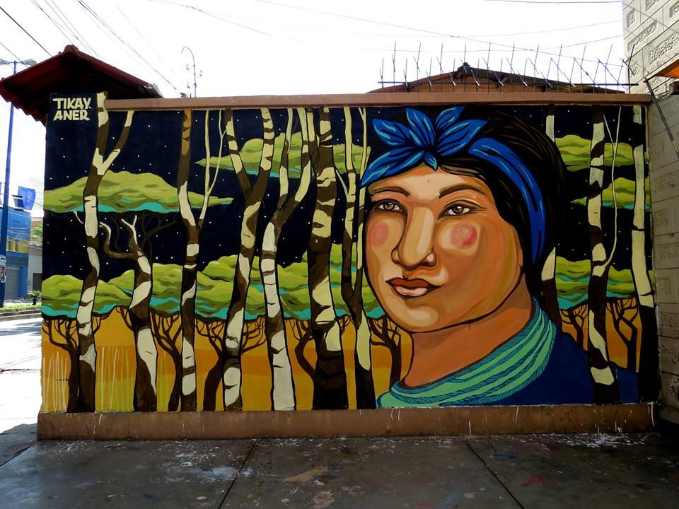 cochabamba2014anerytikaybolivia