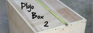Plyo Box 2
