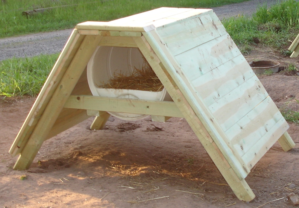 How to Build a Sled Dog House