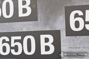 intro650b