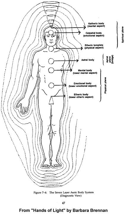 Chakra Diagram Body