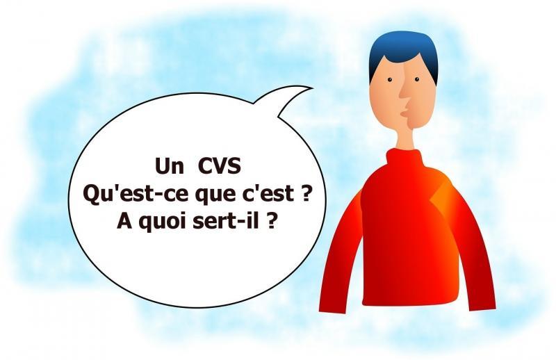 cvs assistante sociale