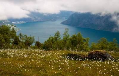 randonnée-fjord-Norvège