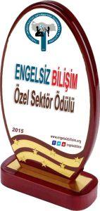 Engelsiz Bilişim Özel Sektör Ödülü
