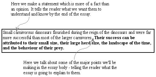 structure of an expository essay - expository essays