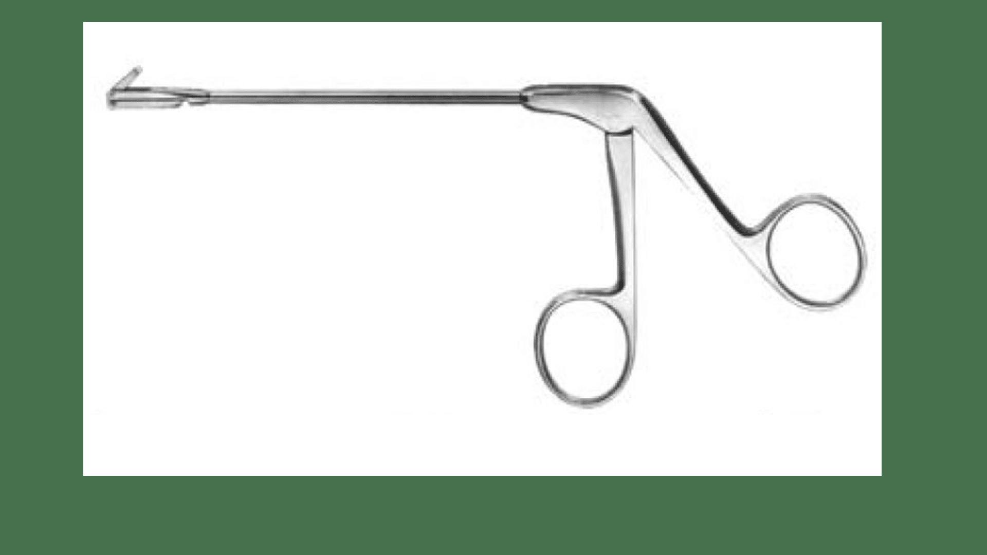 Backbiter Ostrom Antrum Punch Ent Supplies