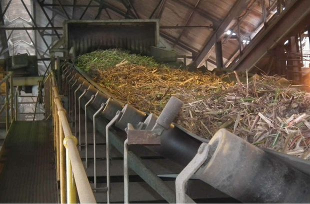 A sugar production plant