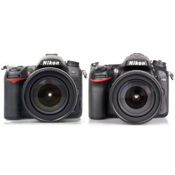 Small Crop Of Nikon D7000 Vs D7100