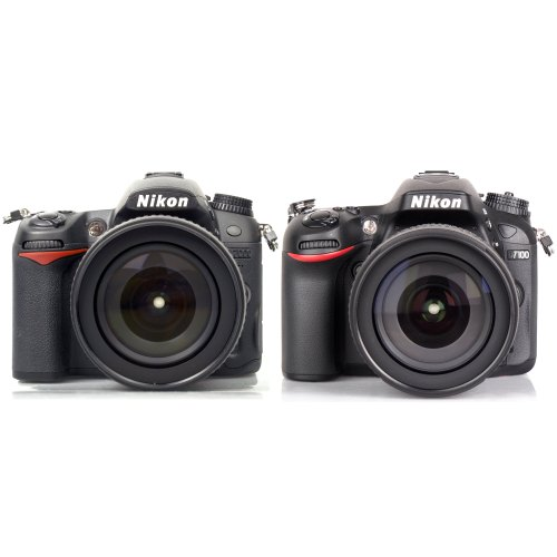 Medium Crop Of Nikon D7000 Vs D7100