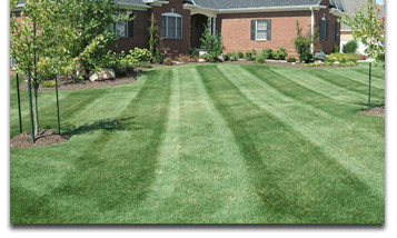 basic-lawn-care-lafayette-indiana