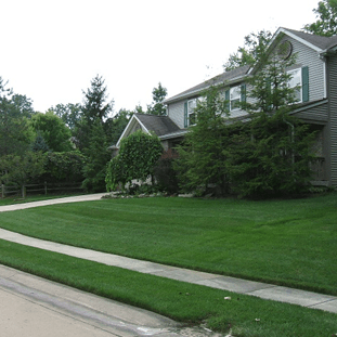 lawn-care-lafayette-lawn-applications-indiana