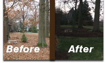 yard-clean-up-spring-fall-green-care-lafayette-indiana