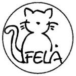 Fela's Avatar