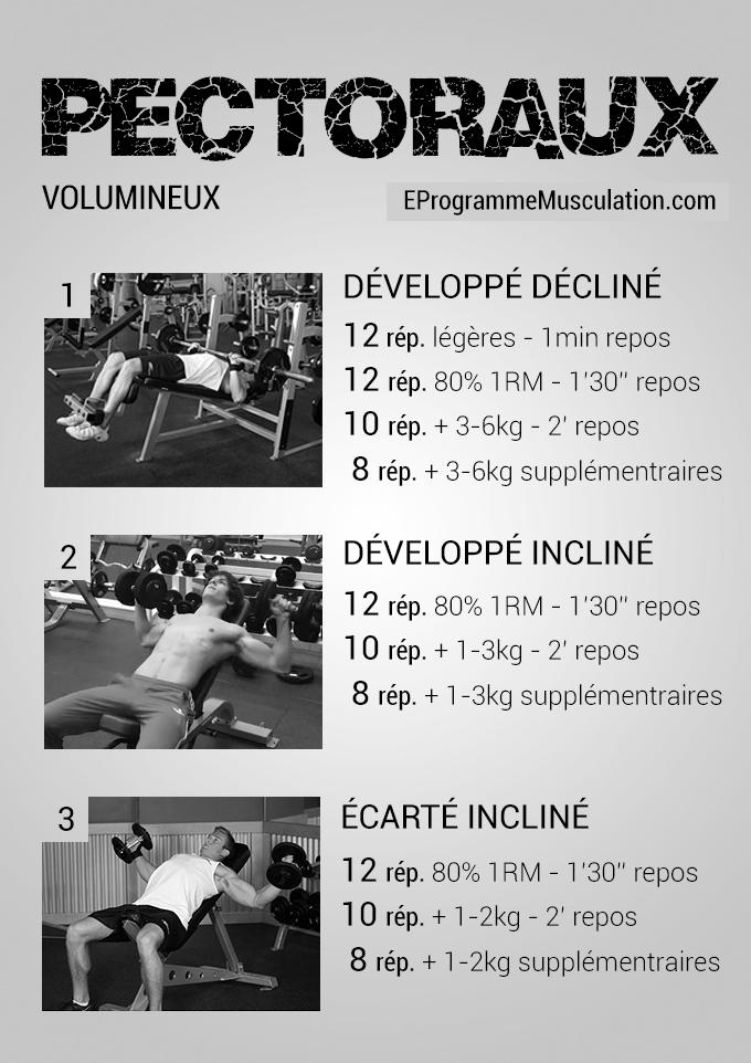 Programme de musculation prise de masse for Musculation volume