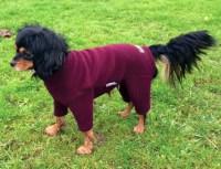 Polartec Fleece Dog Suit - Rainproof, Breathable, Warm and ...