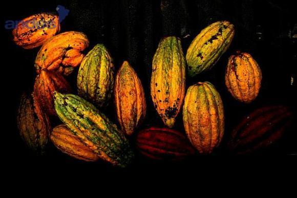 Chocolat Equateur 1