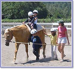 """Why is this dangerous? This situation is """"indefensible"""" because of so much negligence. This was as email solicitation for a therapeutic riding program."""